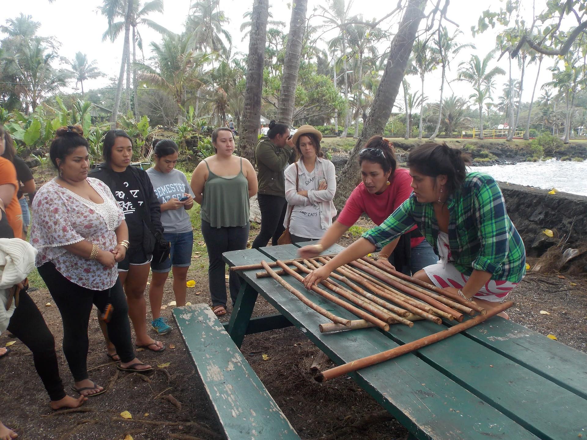 University of Hawai'i at Hilo 2015